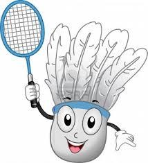 kampioen badminton